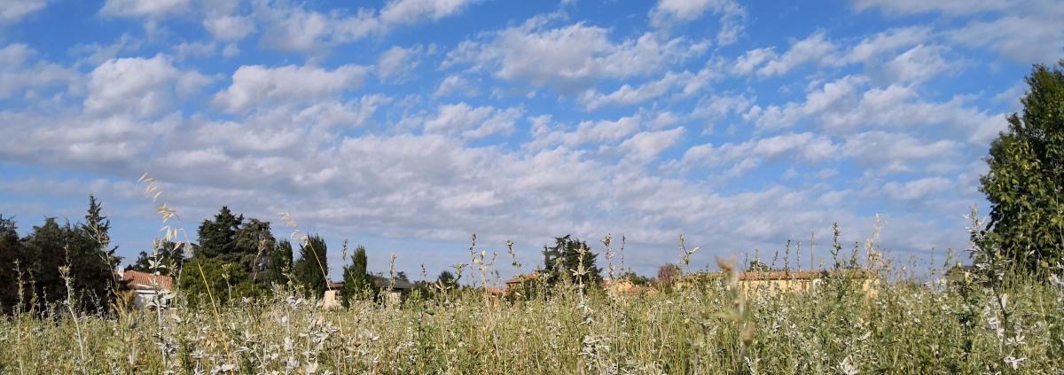 Montebudello